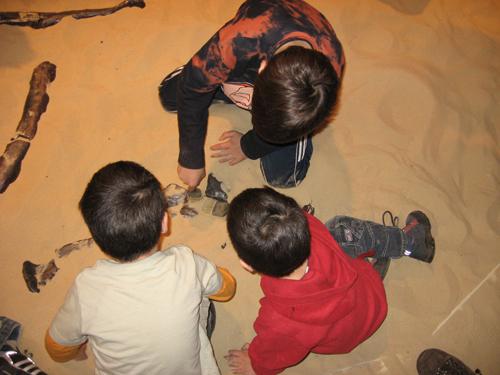 Verbondenheid met mensen en maatschappij: fossielen opgraven