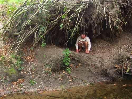 Verbondenheid met de natuur: hut van boomwortels